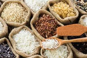 冬瓜排骨汤的功效 冬瓜排骨汤的营养功效