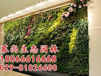 西安移动植物墙 西安植物墙打造可没那么简单喔
