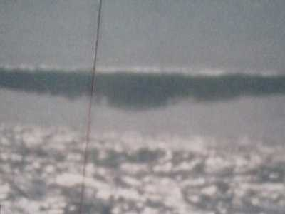 """世界上最大的海参图片 美军潜艇""""海参号""""摄于1971年的UFO照片惹热议"""