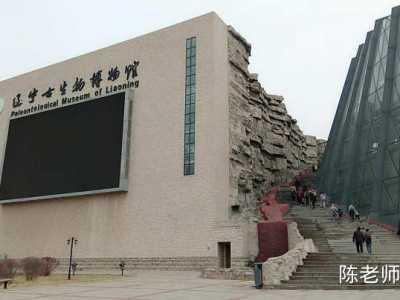 陕西省古生物博物馆 之辽宁古生物博物馆游记