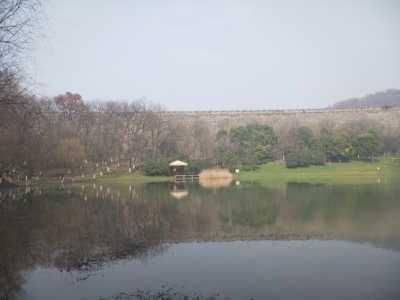 南京琵琶湖酒店 南京那么美我想再——城林山湖美色尽收的琵琶湖