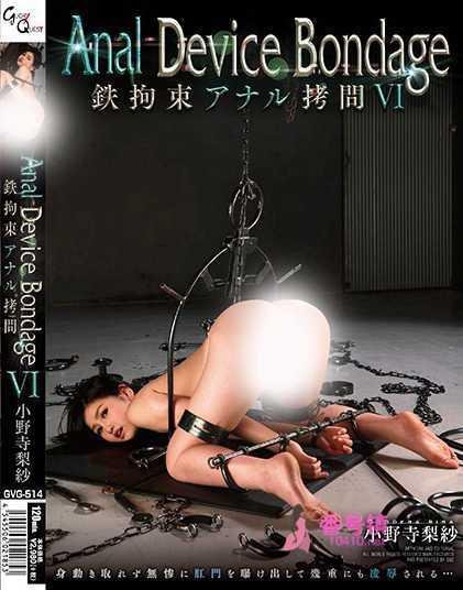 小野寺梨紗作品全集及番号封面一览 经典剧情女仆番号