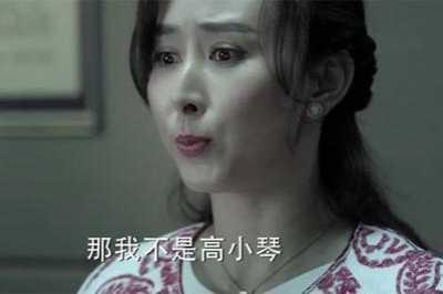 高小凤扮演者剧照 《人民的名义》剧中的高小琴扮演者竟一人分饰两个角色