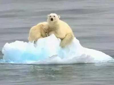 全球变暖的积极影响 全球变暖对我们生活有多大影响
