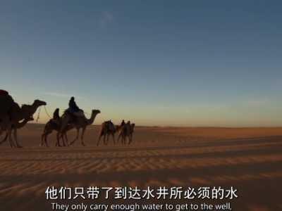 关于沙漠的纪录片 纪录片《人类星球》-