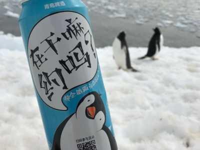 青岛啤酒登陆 青岛啤酒成功登陆南极