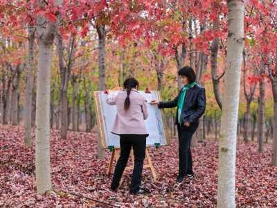 下一个节日是什么 南京周边哪里寻秋