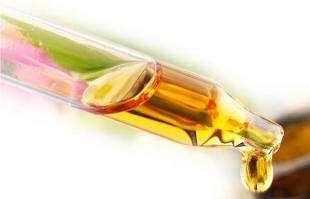 澳洲最好的茶树油 澳大利亚原装进口茶树精油的功效及作用