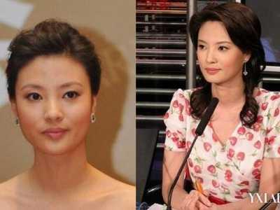 刘芳菲丑闻 刘芳菲因丑闻离开央视是真的