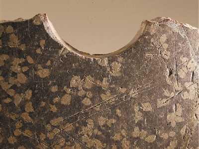 比甲骨文更早的古文字出现 良渚文化至今多少年