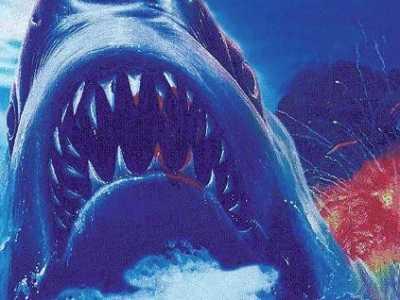 史上最刺激鲨鱼题材电影来袭 和鲨鱼有关的电影